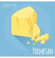 Flat design Parmesan cheese icon vector image