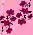 hand drawn flower vector image vector image