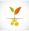 plant with leaves growing from dollar coins vector image vector image