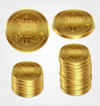 bitcoin money virtual gold business coin financial vector image vector image