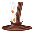 chocolate and milk splash with almond vector image