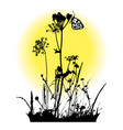 flying butterfly and plants silhouettes vector image