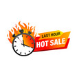 last hour offer banner vector image vector image