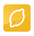 Lemon outline icon Tropical fruit vector image vector image