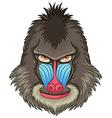 Mandrill baboon vector image vector image