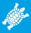 turtle icon white vector image vector image