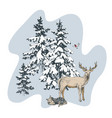 deer familie in winter forest vector image