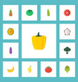 flat icons pitaya ananas muskmelon and other vector image vector image