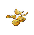 hand drawn rifled potato chips vector image vector image