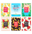 hot big summer sale flyer set collection vector image