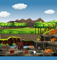 scene with many animals at zoo vector image vector image