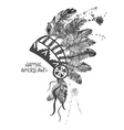 Watercolor American Indian chief headdress vector image