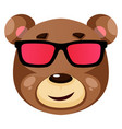 bear is wearing sunglasses on white background vector image vector image