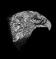Hand-drawn eagle vector image vector image