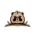 panda head mascot logo design vector image vector image