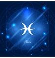 Pisces sign of the zodiac vector image vector image