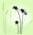 plants and butterfly silhouettes collection vector image