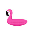 summer flamingo float isolated vector image