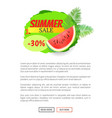 summer sale watermelon discount isolated banner vector image vector image