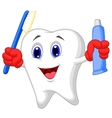 Tooth cartoon holding toothbrush and toothpaste vector image vector image