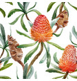 watercolor tropical australian pattern vector image vector image