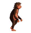 ancient monkey human ancestor