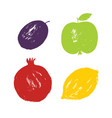 brush simple stamp hand drawn textured fruits set vector image