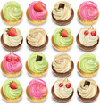 cupcakes set on a white backgrpund summer vector image vector image