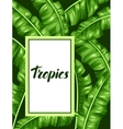Frame with banana leaves Image of decorative vector image vector image