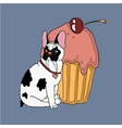 French bulldog with sweet cake vector image