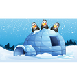 Three penguins above the igloo vector image vector image