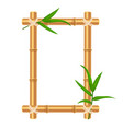 bamboo frame with tropical leaves holiday summer vector image