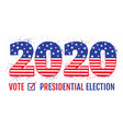 election 2020 like american flag vector image