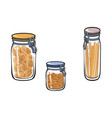 glass jar with swing top lid set sketch vector image