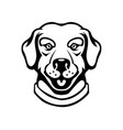 labrador head in engraving style design element vector image vector image