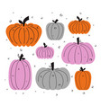 pumpkin set isolated on white vector image