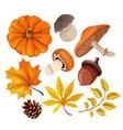 sketch autumn forest symbol set vector image vector image