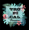 Tropical paradise T-shirt print background vector image vector image