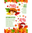 autumn sale poster leaf and mushroom fall vector image vector image