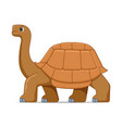 giant galapagos tortoise standing on a white vector image