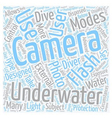How do Underwater Cameras Work text background vector image vector image