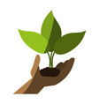 plant sprout icon image vector image vector image