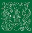 raw food vegetarian cuisine menu vector image vector image