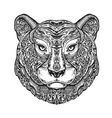 Ethnic ornamented tiger puma panther leopard or vector image