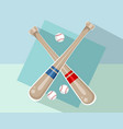 baseball bats and balls vector image