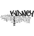bean shaped kidneys text word cloud concept vector image vector image