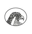 eagle head side mono line vector image