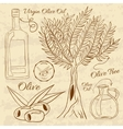 Hand drawn of a set olive Web vector image vector image
