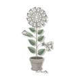 money tree dollar bills grow flower made from vector image vector image