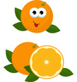 orange whole and slice of orange with orange vector image vector image